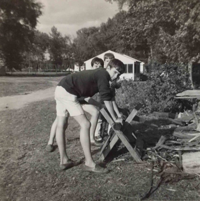 Summer 1964 Isle La Motte, Chopping Wood copy 2
