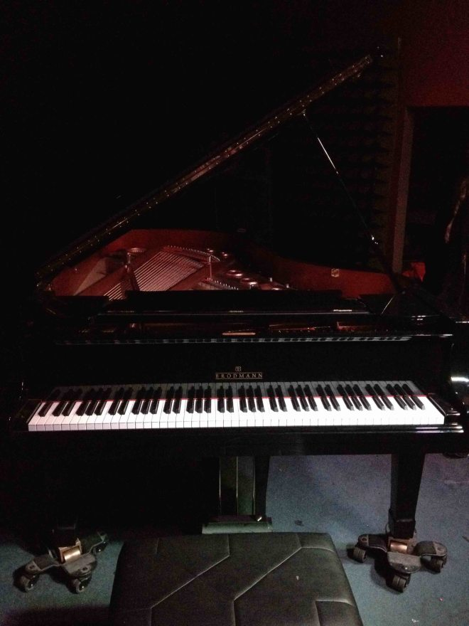 THE BRODMANN GRAND AT THE BLUE NOTE I PLAYED copy 2